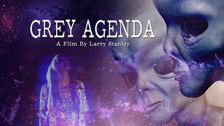 Grey Agenda  |  2017