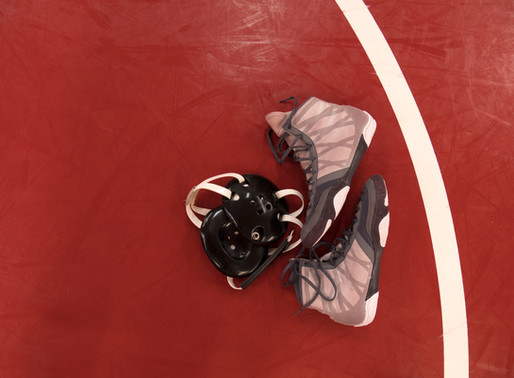 Dixie hoping to start wrestling program