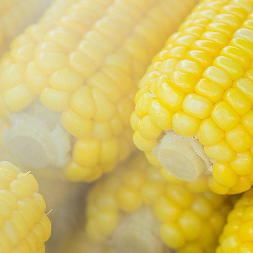 Corn on the Cob (each)