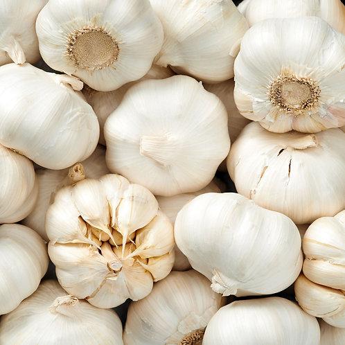 Garlic -  Individual