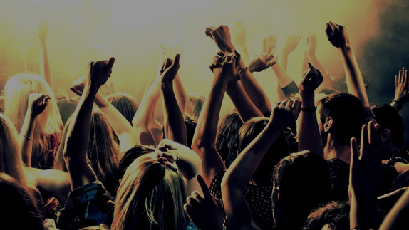 Event Security Series: 1. Crowd Management