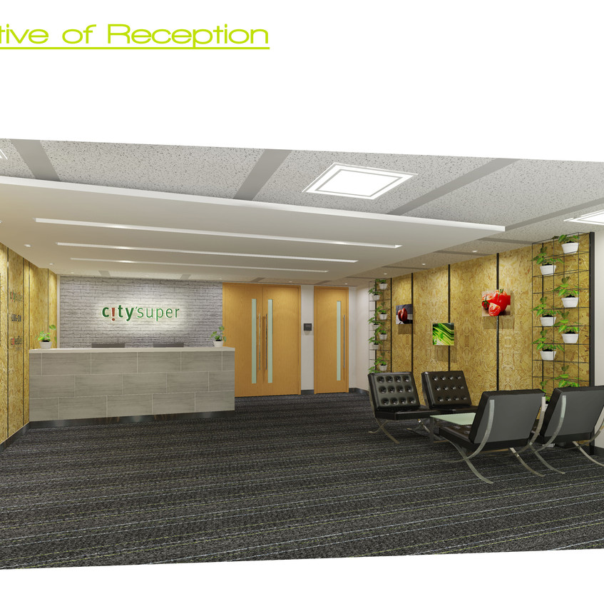 18a_Perspective of reception