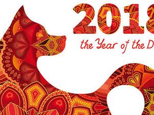 Kong Hei Fa Choi!!! Happy New year of Dog!