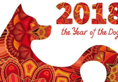 Kong Hei Fa Choi!!! Happy New year of Dog!