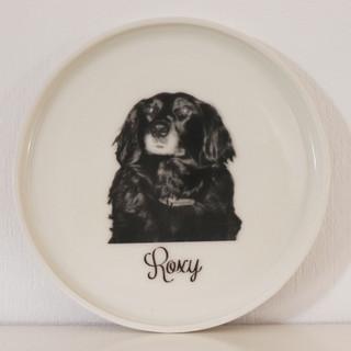 Roxy Dog Plate