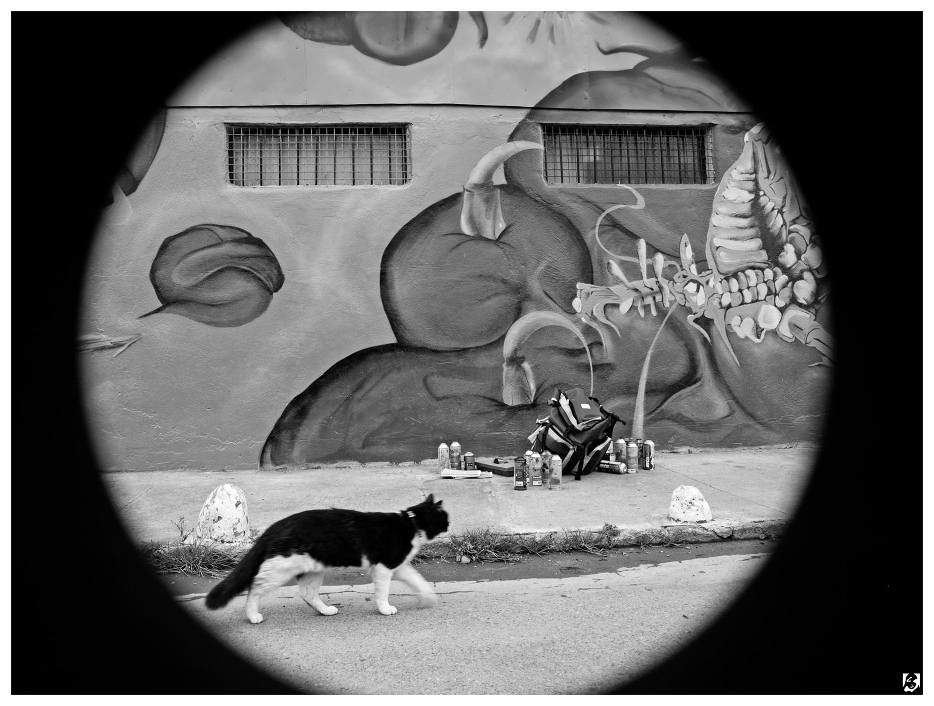 Chamblas_Sept 2008_Muro Maipu