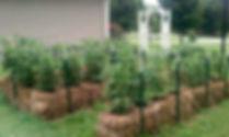 straw-bale-garden.jpg