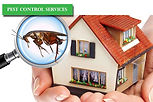 Best-Pest-Control-Services 3.jpg