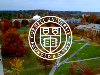 Success Stories: Get ready for the Blizzards at Cornell - College Application!