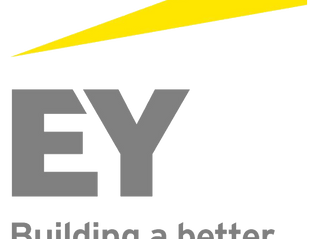 Ernst and Young Advisory and Blackrock Defined Contribution Analyst Questions | GFC Technical Interv