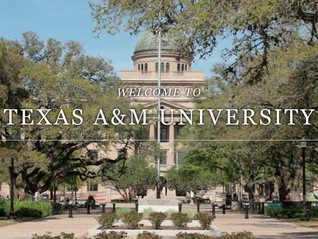 Success Stories: Yeehaw! Ride your way to Texas A & M's Mays Business school!