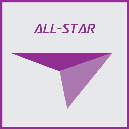 All-Star Customized Coaching for Internships and Full-time Jobs