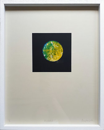 'Blanket 1' Photo lithograph by Josephine Welsh