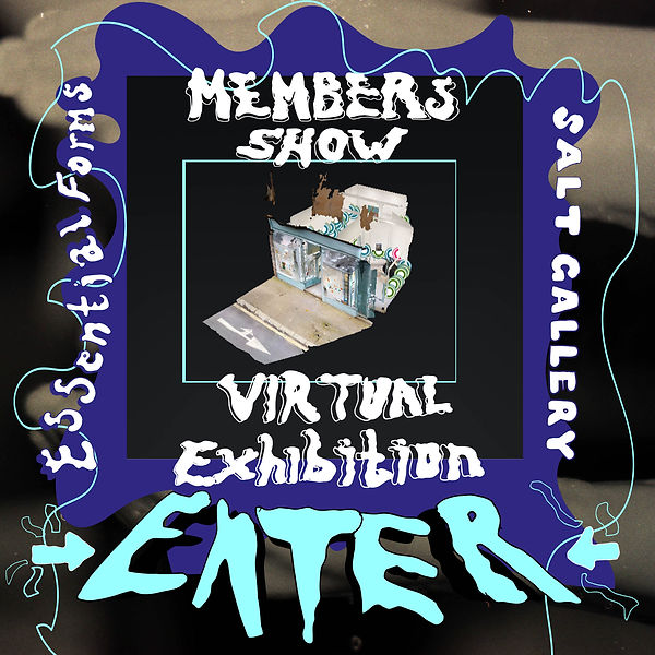Virtual show visual flash 2.jpg