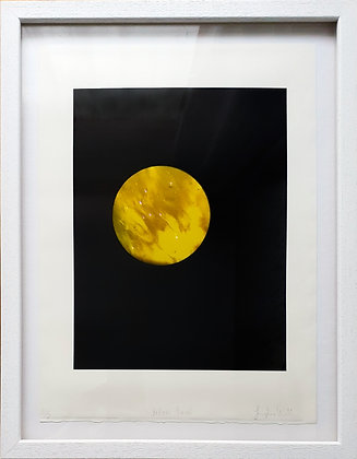 'Yellow Paint' Photo lithograph by Josephine Welsh