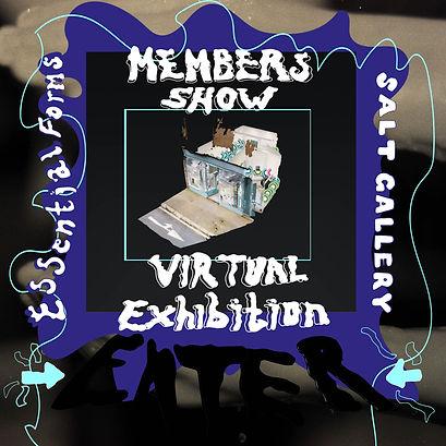 Virtual show visual flash 1.jpg