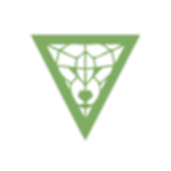 LOGO-INSTA-GREEN.png