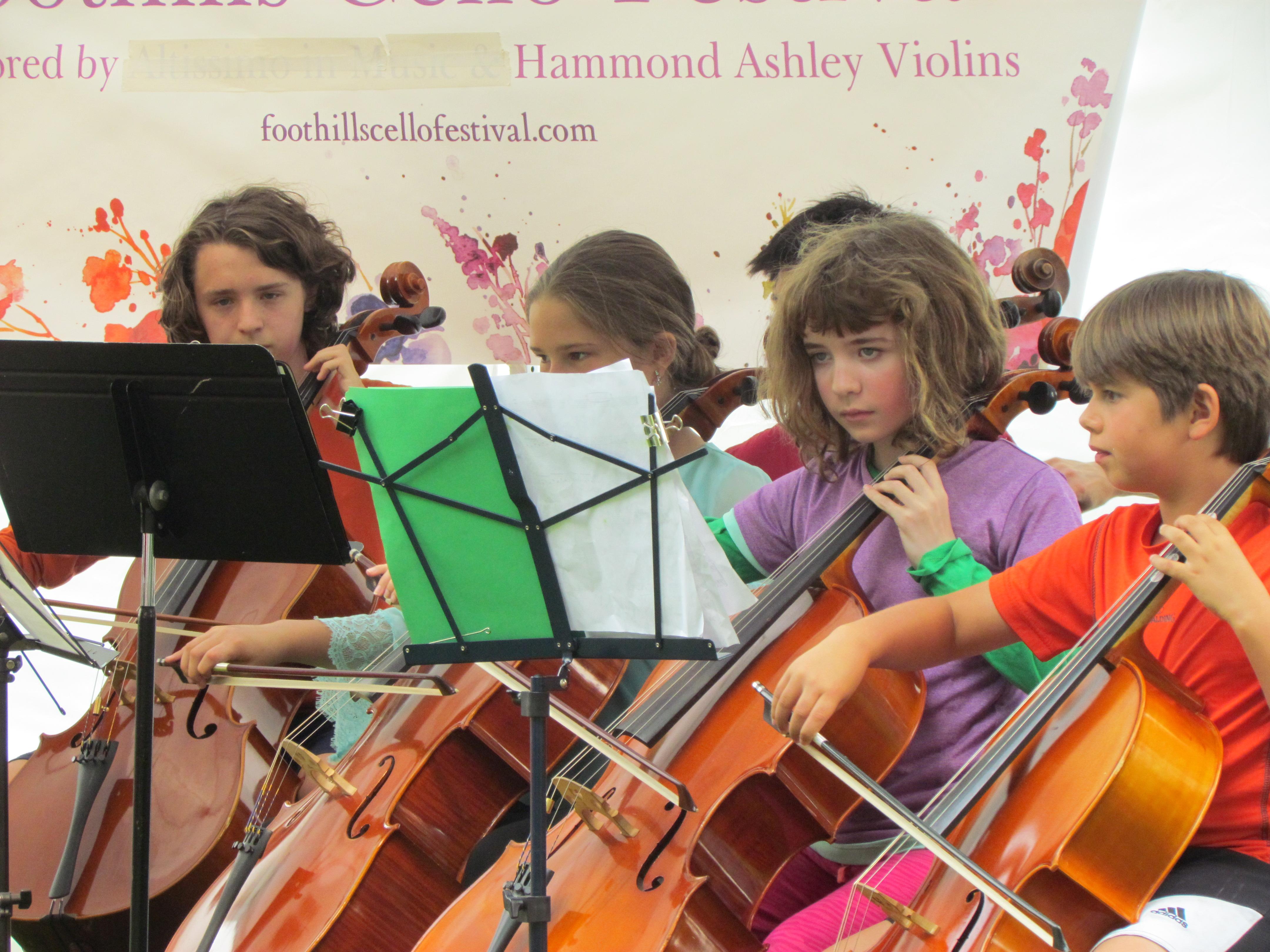 Cello festival concert