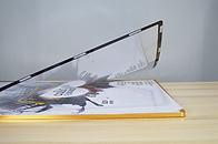 Plume cadre mural magnétique 11x17 - 18x24 - 24x36 solution affichage montréal québec