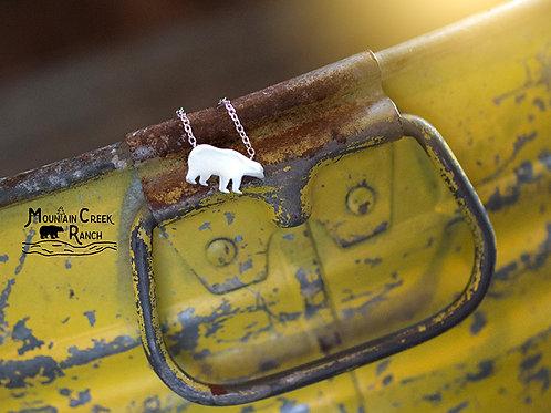 Little House Photography & Mountain Creek Ranch Choker
