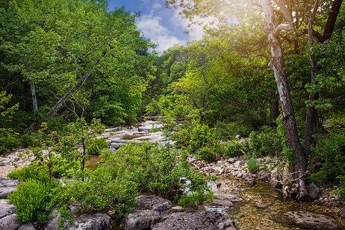 Hercules Glades Wilderness - Taney County, Missouri