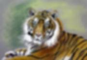 Tiger-Pastel.JPG