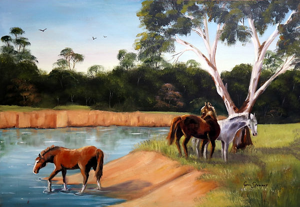 Horses resting beside the Murray River