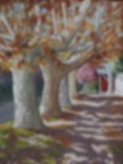 Autumn Street.JPG