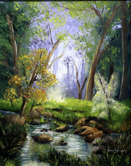 Rocky Stream in thick bushland