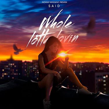 ремикс SAID - Whole lotta lovin.jpg