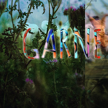 GARNE - КИНО.jpg