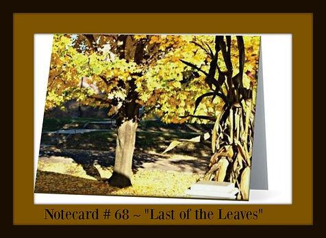 Last of Leaves 68.jpg