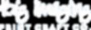 NEW BigImaging Logo_WHITE_RGB.png