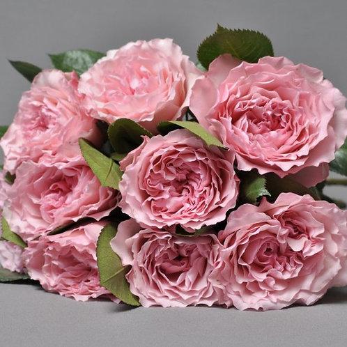 Майрас Роуз (Mayra's Rose)