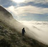 WordPress - Life Wonderings of a Nature Lover