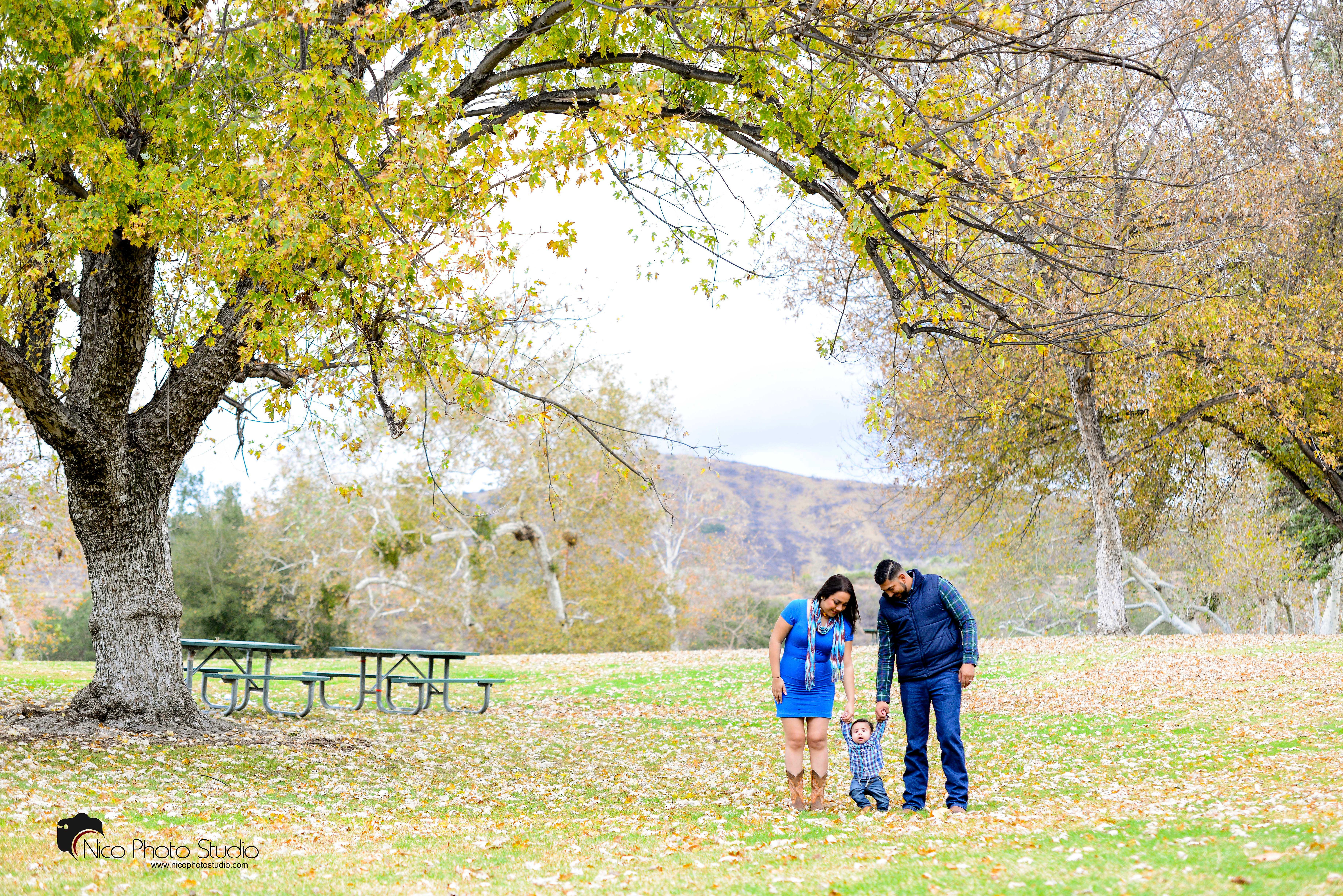 $150 Holiday Mini Sessions