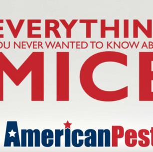 American Pest Facebook Video