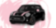 Mary Kay car.png