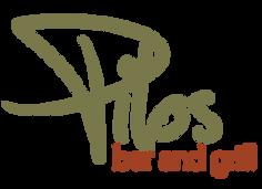 Pilos-logo-design-Graphic-Design-in-Miam