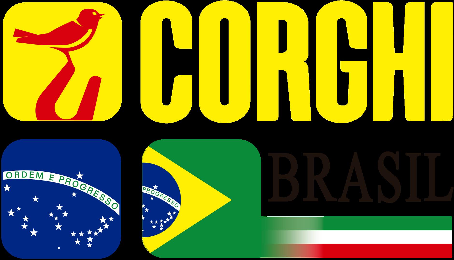 Logo_Brasile_2016.png
