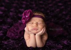 Cleveland Ohio Newborn Portraits