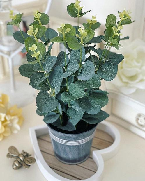 Artificial Eucalyptus In Tin Pot