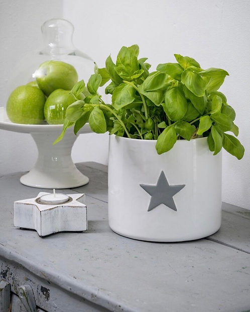 Large White Ceramic Flower Pot with Star