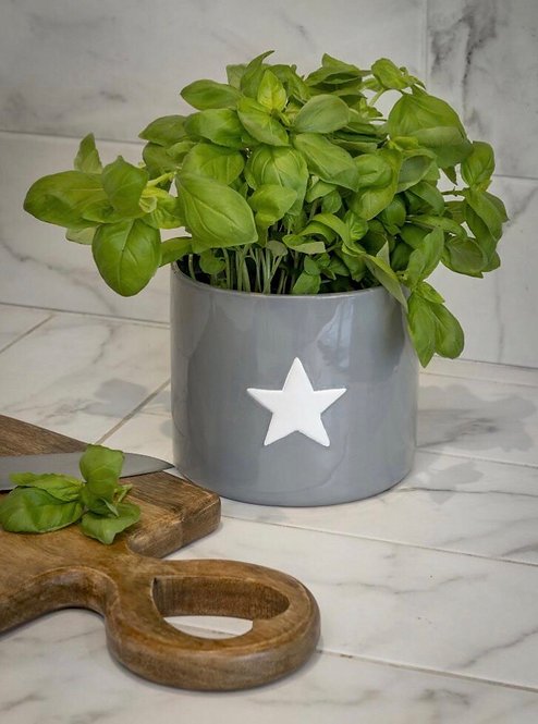 Large Grey Ceramic Flower Pot with Star