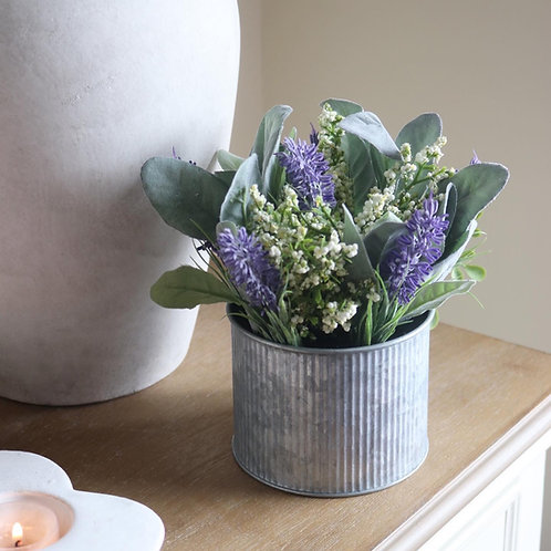 Lavender & Lily in Tin Pot