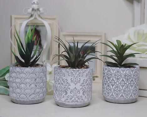 Artificial Succulent in Cement Pot