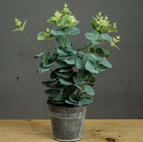 Artificial Eucalyptus In Tin Pot