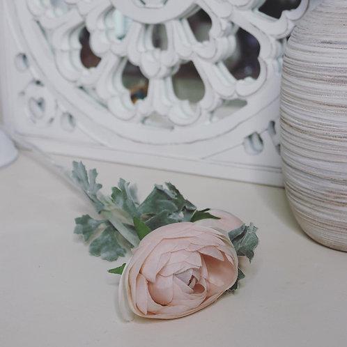 Pastel Pink or Cream Ranunculus