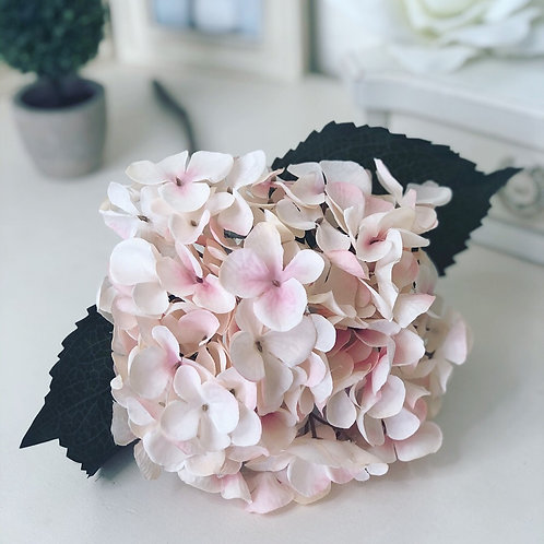 Single Stem Hydrangea Blush