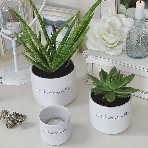 Set of 3 White Ceramic Pots Home or Love